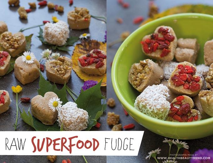 rawsuperfoodfudge